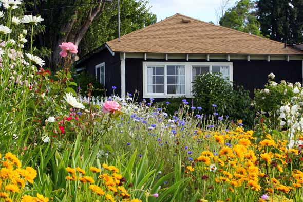 Staging your home the bogar group 39 s blog for Wildflower garden designs